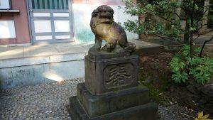 北澤八幡宮 狛犬 (2)