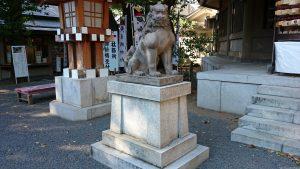 東郷神社 狛犬 (1)