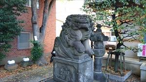 穏田神社 狛犬 (3)