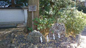 赤坂日枝神社 さざれ石