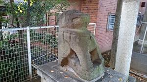 穏田神社 狛犬 (1)