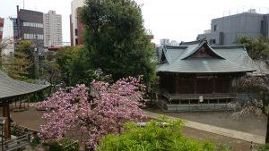 鳩森八幡神社 富士浅間神社 山頂