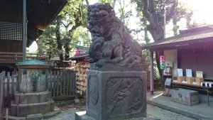 代々木八幡宮 拝殿前狛犬 (2)