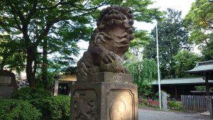 代々木八幡宮 拝殿前狛犬 (1)