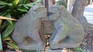 麻布氷川神社 狛犬 (1)