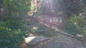 赤坂氷川神社 東側参道庭園