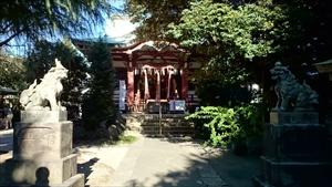 青山熊野神社 狛犬と拝殿