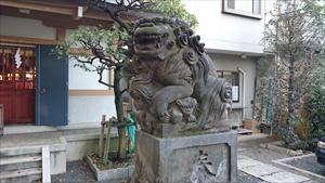 穏田神社 狛犬 (4)