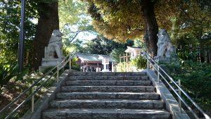 東郷神社 神池・庭園 (2)