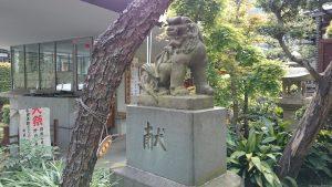 鳩森八幡神社 正面参道狛犬 阿