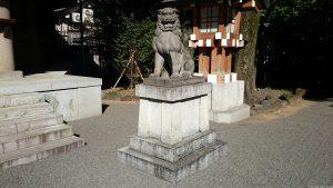 東郷神社 狛犬 (2)