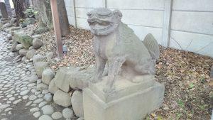 代々木八幡宮 参道狛犬 (2)