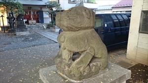 穏田神社 狛犬 (2)