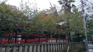 豐榮稲荷神社 本殿