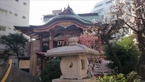 平河天満宮 梅と社殿