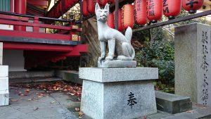 茶ノ木稲荷神社 神狐 (2)