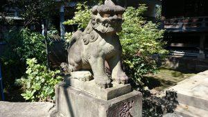 文京区白山神社 狛犬 吽