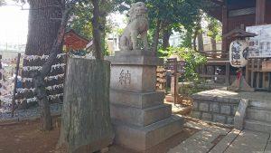中目黒八幡神社 狛犬 吽