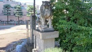 今戸神社 拝殿前狛犬 (1)