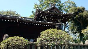 文京区白山神社 本殿