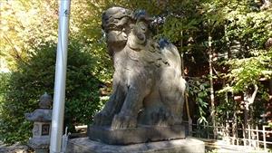 市谷亀岡八幡宮 狛犬阿形