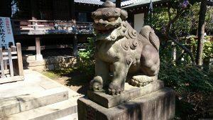 文京区白山神社 狛犬 阿