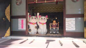 今戸神社 拝殿内招き猫・福禄寿像