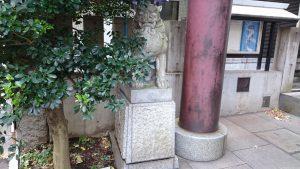築土神社 社頭狛犬 (1)