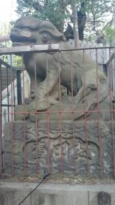 御田八幡神社 狛犬 (2)