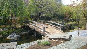 湯島天神 梅園 (3)