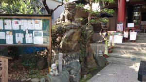 亀戸天祖神社 狛犬 吽
