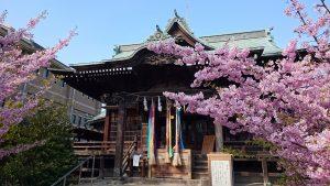 桜神宮 拝殿