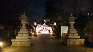 桜神宮 河津桜 (1)