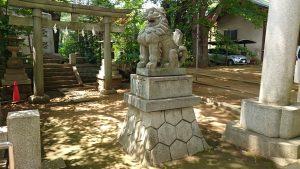 玉川神社 鳥居前狛犬 阿