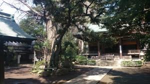 奥澤神社 境内