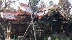愛宕神社 拝殿