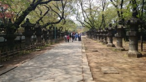 上野東照宮 参道 石燈籠