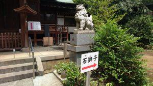 玉川神社 拝殿前狛犬 阿