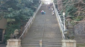 (芝)愛宕神社 出世の石段