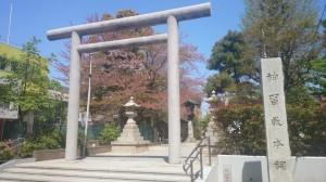 桜神宮 鳥居