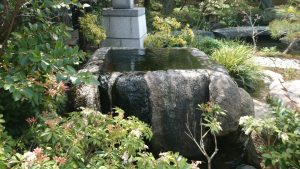 湯島天神 梅園 (1)