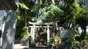 多摩川浅間神社 二の鳥居、三の鳥居