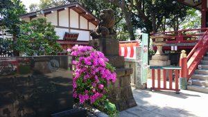 多摩川浅間神社 狛犬 吽