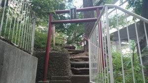 上目黒氷川神社(旧大橋氷川神社)  目黒富士 (2)