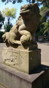 駒留八幡神社 狛犬 (1)
