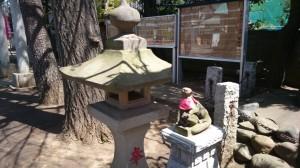 久富稲荷神社 南側鳥居の狐 (1)