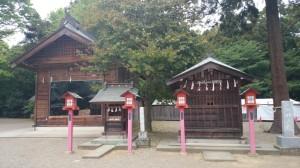 鷲宮神社 八坂神社