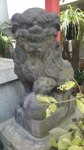 亀塚稲荷神社 狛犬 阿