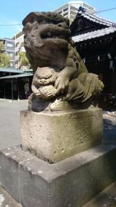 駒留八幡神社 狛犬 (2)