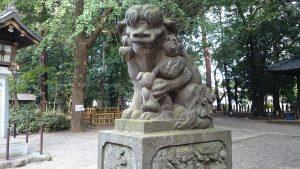 世田谷八幡宮 狛犬 阿
